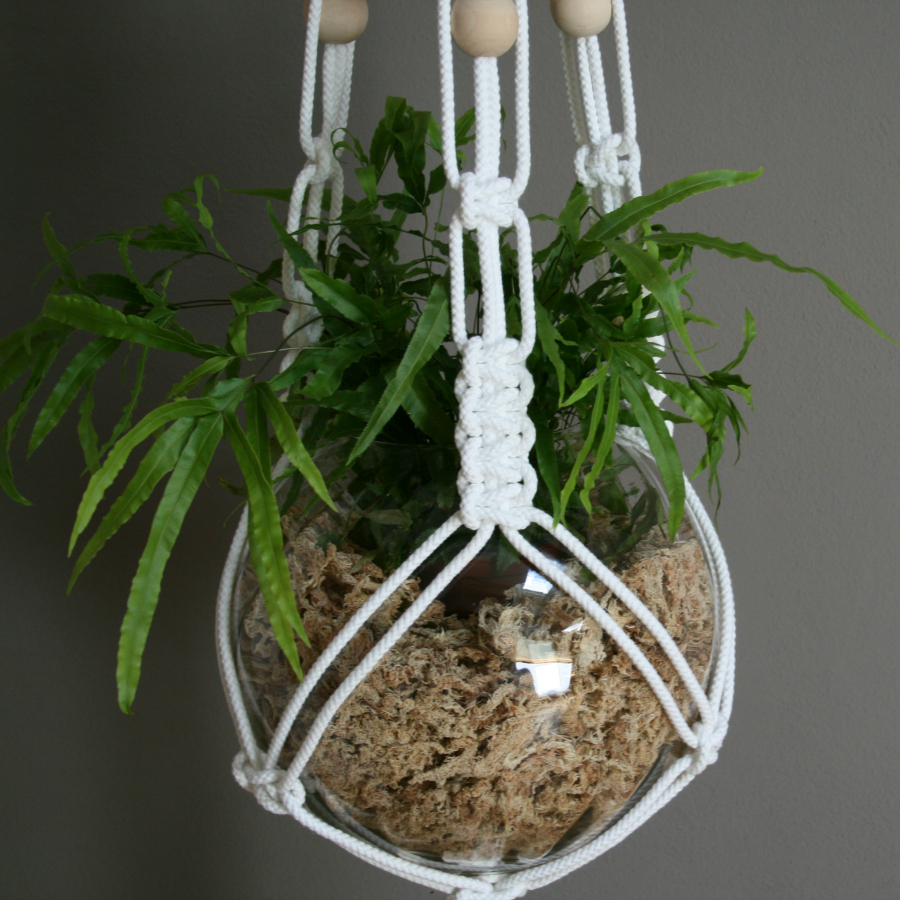macrame knots plant hangers white macrame plant hanger by the knot studio miss v 4546